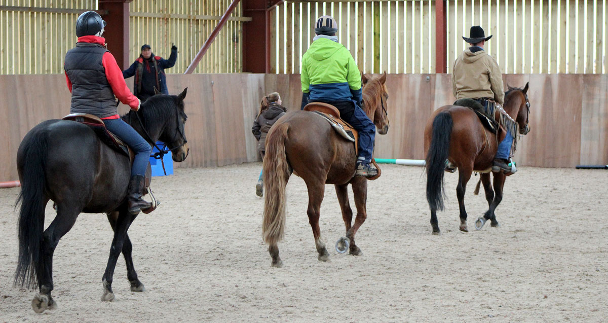 Horseback-UK-Corporate-Team-Leadership-Programs-5