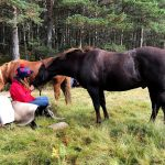 Horseback-UK-Community-Leadership-Courses-14