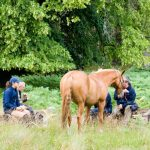 Horseback-UK-Community-Leadership-Courses-17