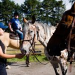 Horseback-UK-Community-Leadership-Courses-20