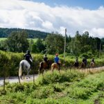 Horseback-UK-Community-Leadership-Courses-21
