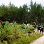 Horseback-UK-Community-Leadership-Courses-27