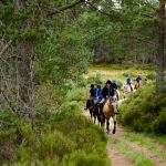 Horseback-UK-Community-Leadership-Courses-28