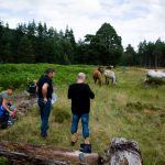 Horseback-UK-Community-Leadership-Courses-35