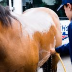 Horseback-UK-Community-Leadership-Courses-43