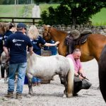 Horseback-UK-Corporate-Leadership-Courses-15