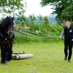 Horseback-UK-Corporate-Leadership-Courses-88
