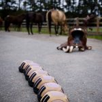 Horseback-UK-Military-Leadership-Courses-13
