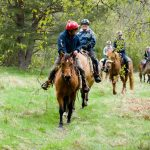 Horseback-UK-Schools-Leadership-Courses-46