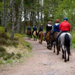 Horseback-UK-Schools-Leadership-Courses-48