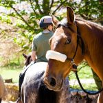 Horseback-UK-Schools-Leadership-Courses-50