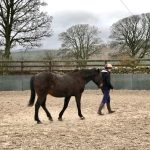 Horseback-UK-Schools-Leadership-Courses-6