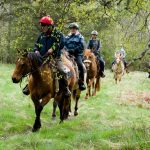 Horseback-UK-Schools-Leadership-Courses-66