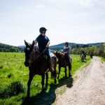 Horseback-UK-Schools-Leadership-Courses-84