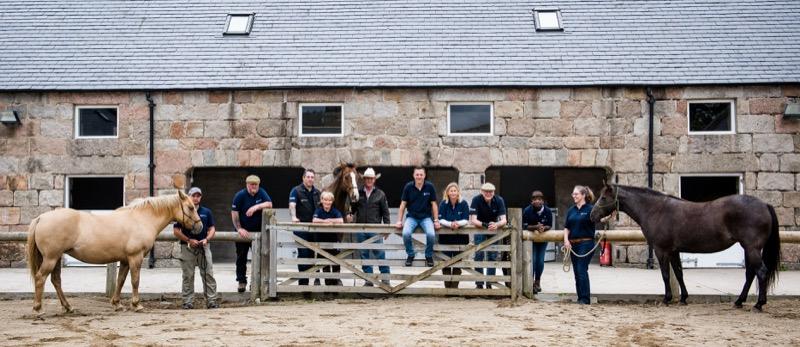 horseback-uk-Community-horse-leadership-courses-22