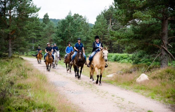 Horseback-UK-Community-Leadership-Courses-29