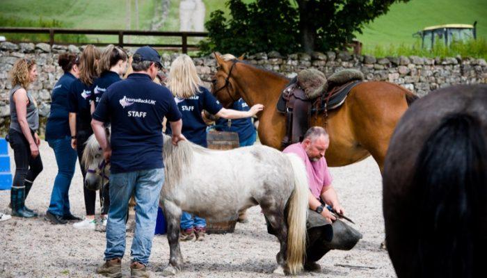 Horseback-UK-Corporate-Leadership-Courses-15