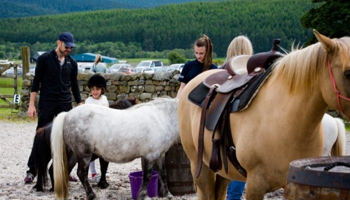 Horseback-UK-Corporate-Leadership-Courses-43