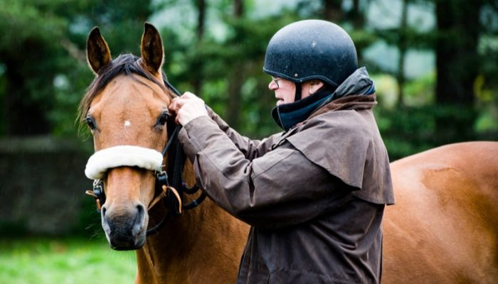 Horseback-UK-Military-Leadership-Courses-18