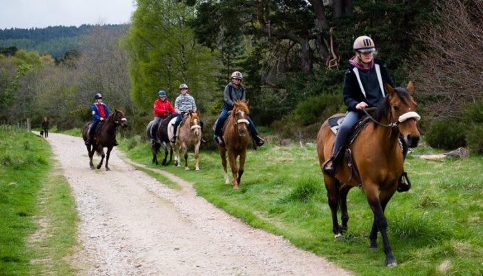 Horseback-UK-Schools-Leadership-Courses-52