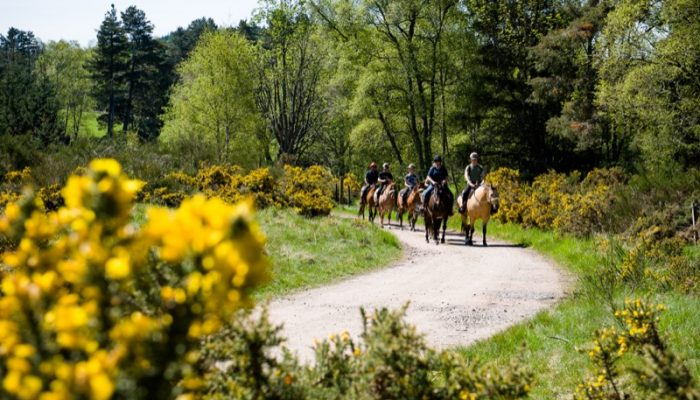 Horseback-UK-Schools-Leadership-Courses-59