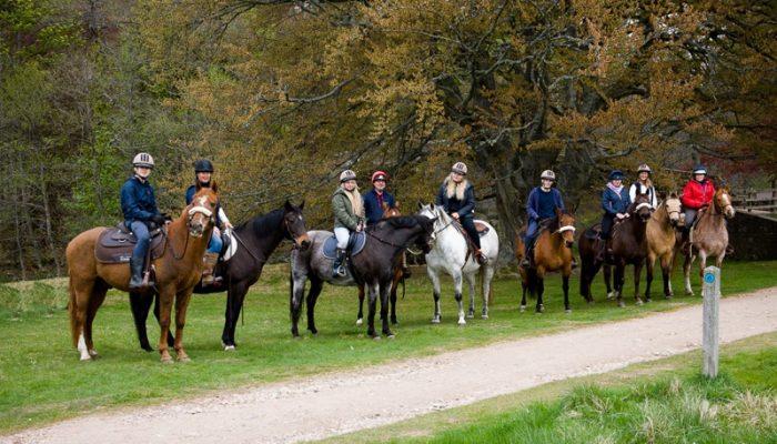 Horseback-UK-Schools-Leadership-Courses-77