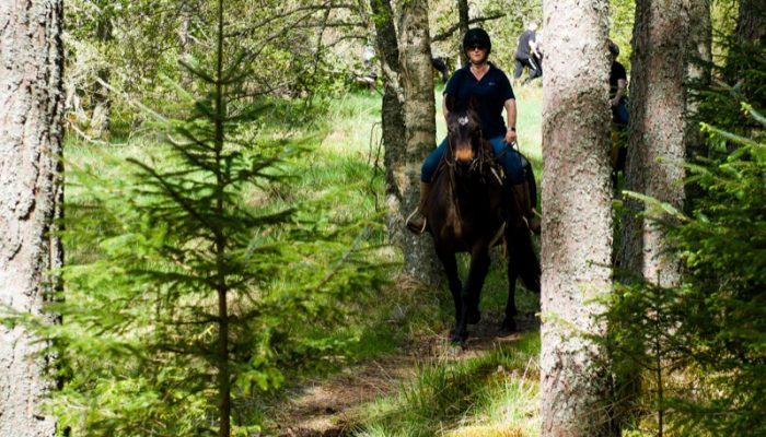 Horseback-UK-Schools-Leadership-Courses-81